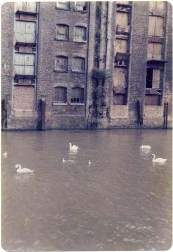 Butler's Wharf, 1979 (photo: Fran Cottell)
